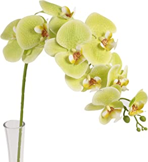 Ivalue Orchid Flowers Artificial Stems for Home Decoration Green Phalaenopsis Butterfly Flowers Orchid Branches Pack of 4 (38