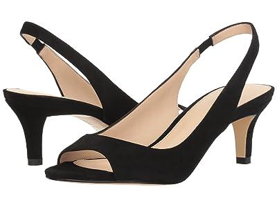 Pelle Moda Belini (Black Suede) High Heels