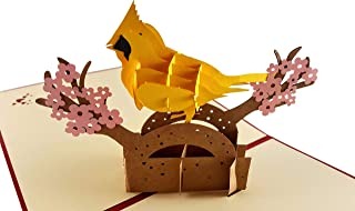 iGifts And Cards Cute Yellow Cardinal 3D Pop Up Greeting Card, Bird, Animal, Sweet, Joy, Happiness, Positive Outlook, Half-Fold, All Occasion, Thinking of You, Happy Birthday, Just Because, Friendship