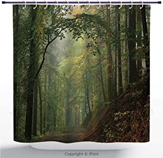MyCCIC Funky Shower Curtain/Forest, Misty Autumn Forest with Shaded Trees Foggy Dreamy Woodland Scene, Olive and Reseda Green Brown/Bathroom Shower Curtains Deasign
