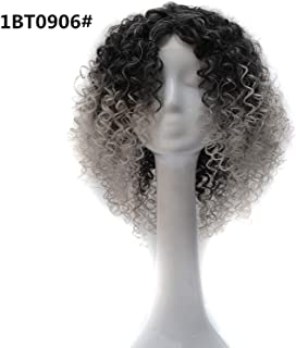 Lady night Short Synthetic Afro Curly Wigs 8 Colors Light Grey Brown Ombre Wig for Black Women Blue Purple Natural Hair,T1B/Light Grey,14inches