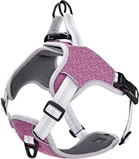 LOCYFENS Dog Harness No Pull,Dog Harness for Large Dogs,Adjustable Step in Harness,Safety 360° Reflective Dog Harness,Easy...