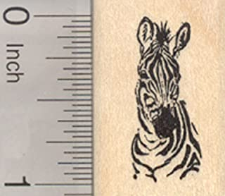 Best zebra rubber stamp Reviews