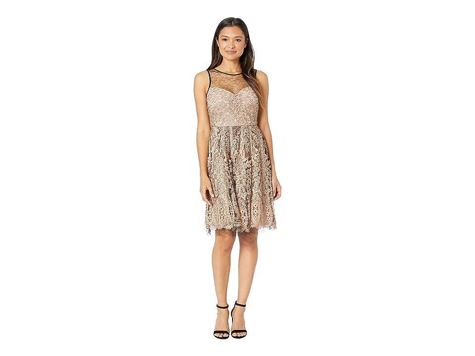 Taylor Embroidred Mesh Sleeveless Cocktail Dress (Blush/Black) Women