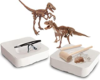 Discovery #MINDBLOWN Toy Dinosaur 3D Fossil Skeleton Excavation Kit, Includes 15 Pc T-Rex/10 Pc Velociraptor Replica Puzzle Bones, Tool Kit W/Hammer, Chisel, and Brush, an Educational STEM Gift