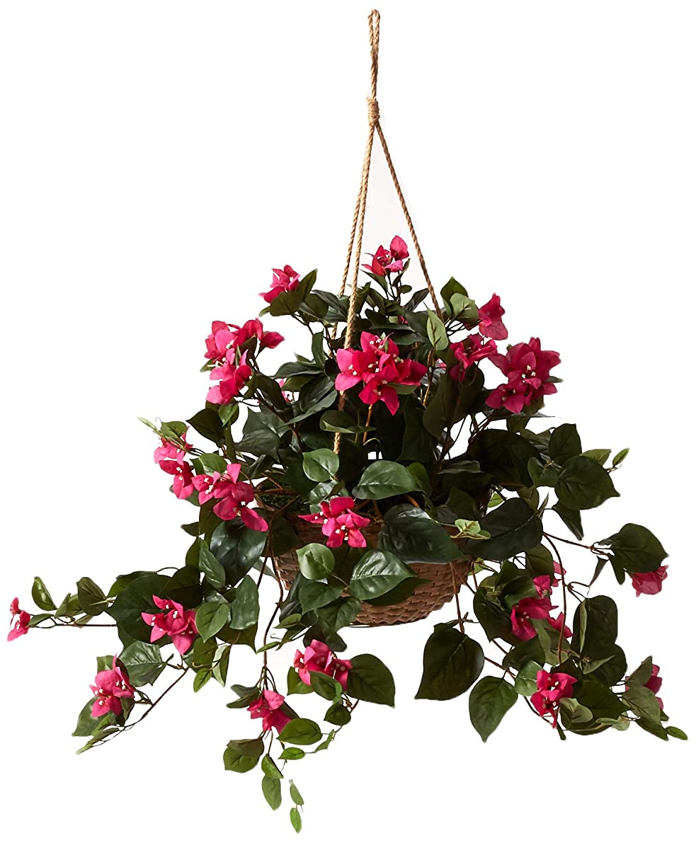 Nearly Natural 6608 Bougainvillea Hanging Basket Decorative Silk Plant, Beauty