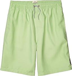 Bondi Pigment Volley Boardshorts (Big Kids)