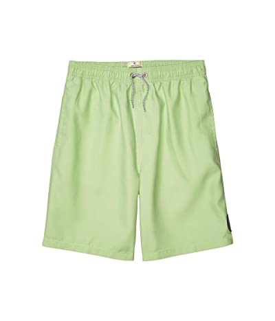 Rip Curl Kids Bondi Pigment Volley Boardshorts (Big Kids) (Lime) Boy