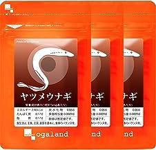 オーガランド[ogaland] ヤツメウナギ [ 90粒 / 約3ヶ月分 ] (健康サポート/デジタルケア) DHA ビタミンA サプリメント