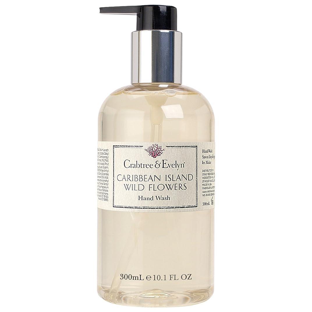 しかしながらソース支払いクラブツリー&イヴリンカリブ海の島ハンドウォッシュ300ミリリットル (Crabtree & Evelyn) (x2) - Crabtree & Evelyn Caribbean Island Hand Wash 300ml (Pack of 2) [並行輸入品]