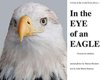 In the Eye of an Eagle: A look at the world from above.