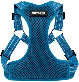 Best Pet Supplies Voyager Step-in Flex Dog Harness - All Weather Mesh, Step in Adjustable Harness for Small and Medium Dog...