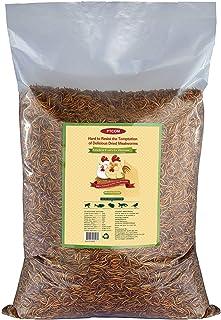 10lbs Bulk Non-GMO Dried Mealworms for Reptile , Tortoise ; Amphibian ,Lizard ;Wild..