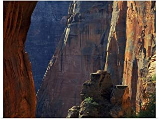 GREATBIGCANVAS Poster Print Zion National Park, Utah, Cliffs Above Zion Canyon Near Scouts Lookout by Scott T. Smith 40