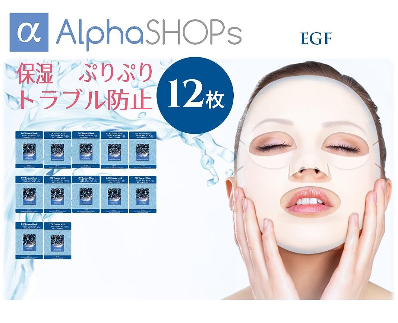 間違いなくディレクタースキャンダル16枚セット EGF エッセンスマスク 韓国コスメ MIJIN(ミジン)
