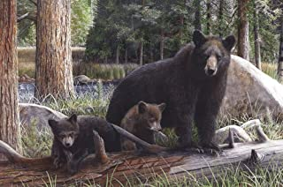 New Discoveries by Kevin Daniel Art Print Poster, Black Bear and Cubs Size 36 x 24 inches