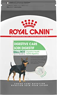 Best special dog food price Reviews