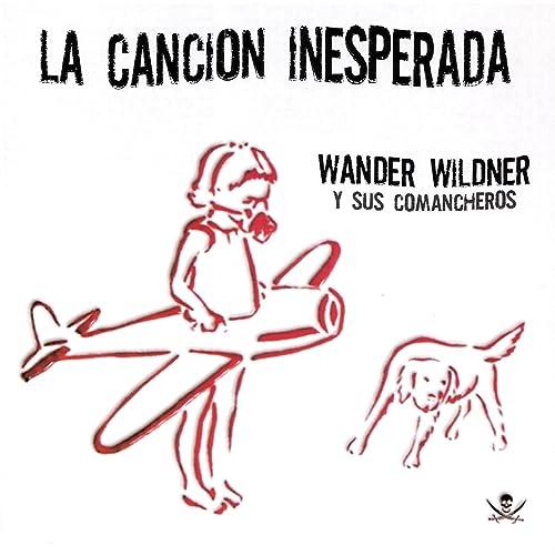 wander wildner amigo punk
