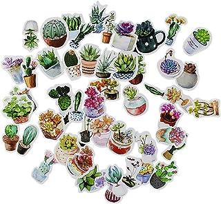 Miayon 50PCS Cute Cactus and Succulent Plants Stickers for Scrapbook Album Planner Laptop