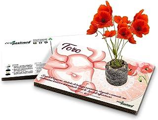 Eco-Postcard   Biglietto d'auguri segno zodiacale Toro   Regalo compleanno ecologico zodiaco con semi di Papavero   Kit co...