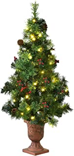 Best 3 foot decorated christmas tree Reviews