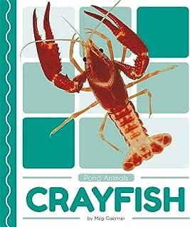 Crayfish (Pond Animals)