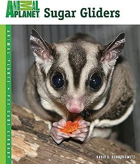 Best animal planet sugar glider Reviews