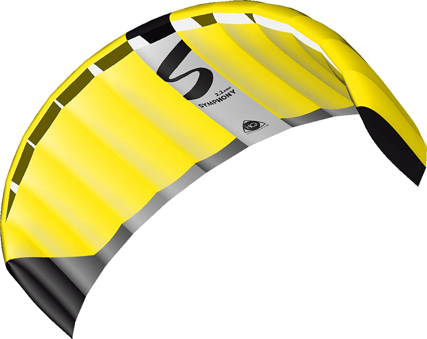 HQ Same day shipping Kites Dual-line Outdoor Sports P Symphony Activities Cheap SALE Start Foil and