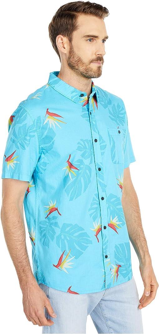 Paradise Pacific Blue