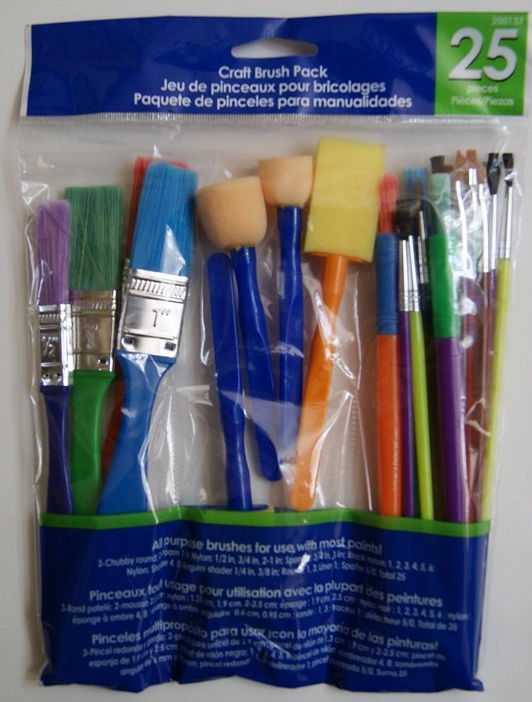 Craft Brush Starter Kit Pack - 25 Pieces