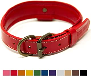 leather collar and lead