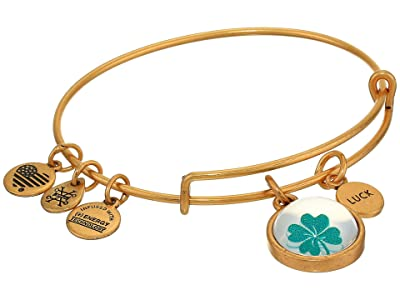 Alex and Ani Duo Charm Mantra Bangle Bracelet (Gold/Luck Mantra) Bracelet