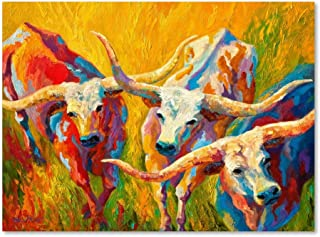 Dance of the Longhorns by Marion Rose, 24x32-Inch Canvas Wall Art