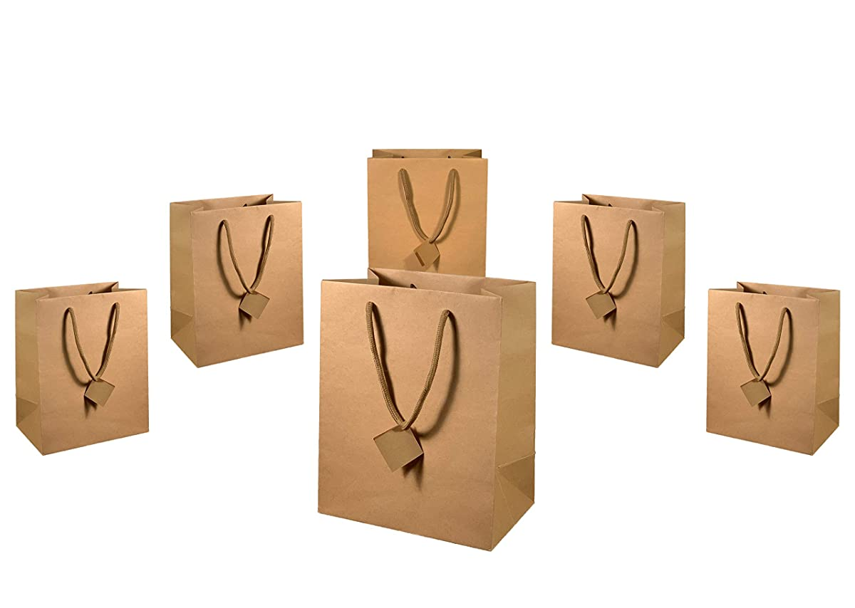Gibbous Premium Brown Kraft Paper Gift Bags in 12 Pack Bulk with Cotton Handles - Bridesmaid Girl Groomsmen boy Party, Birthday Gift, Holiday Gift, All Occasion Gift Bag, Small/Large Bag (8x5x10