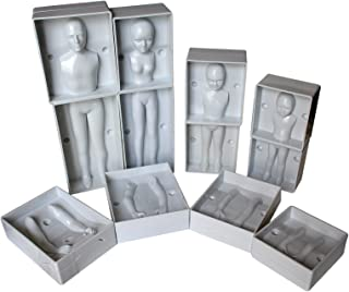 24 Pc Family Set of Plastic Human Fondant Moulds by Kurtzy - Full Family Set including 4 Sizes - Man, Women and 2 Children - Full Instructions Included - Perfect for Beginners and Professionals