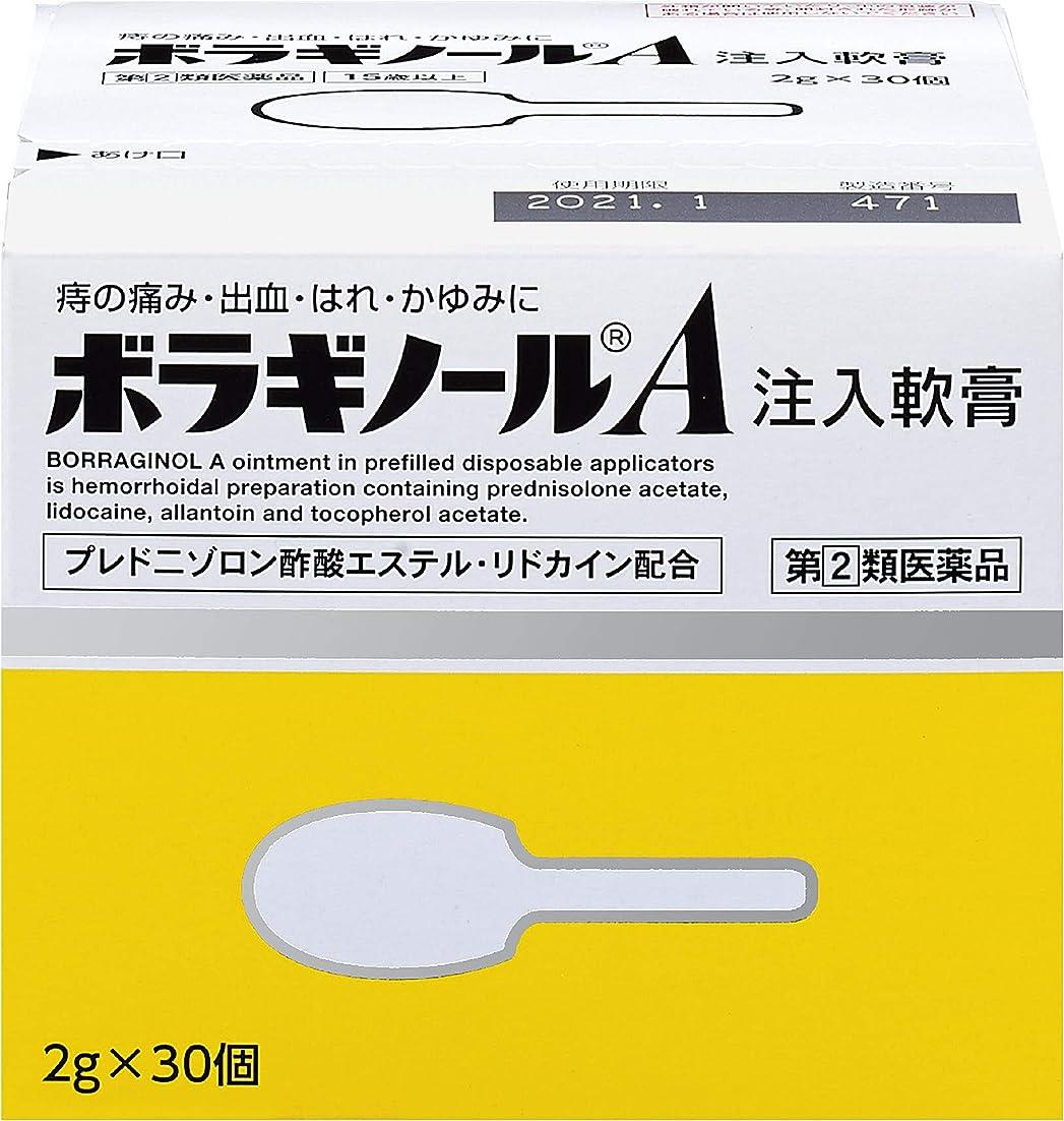 欲望しみコマンド【指定第2類医薬品】ボラギノールA注入軟膏 2g×30