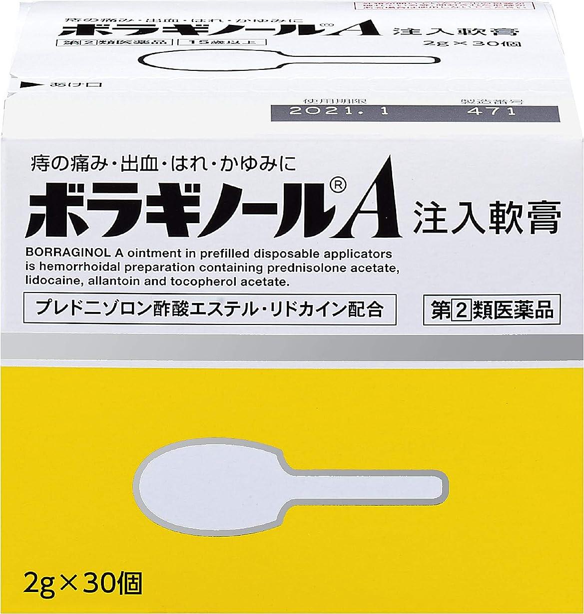 市の花繁雑流暢【指定第2類医薬品】ボラギノールA注入軟膏 2g×30