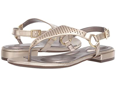 Rockport Total Motion Zosia Thong (Gold) Women
