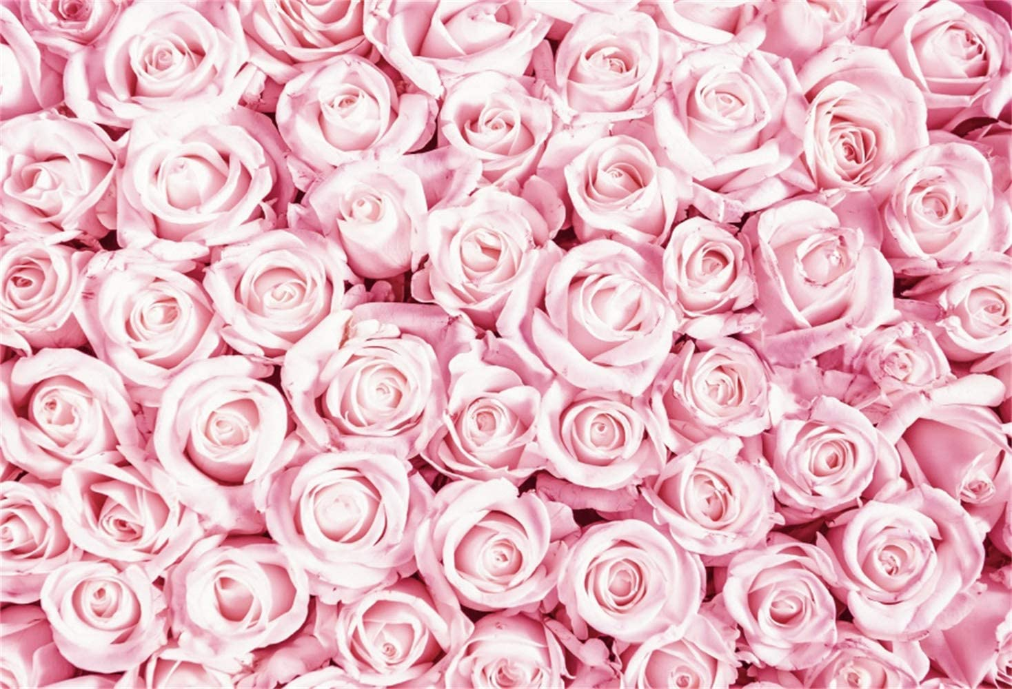 Leowefowa Romantic Pink Rose Flowers Wall Backdrop 12x8ft Vinyl Valentines Day Photography Background Engagment Bridal Party Banner Wedding Lovers Shoot Bridal Shower Proposal Photo Props
