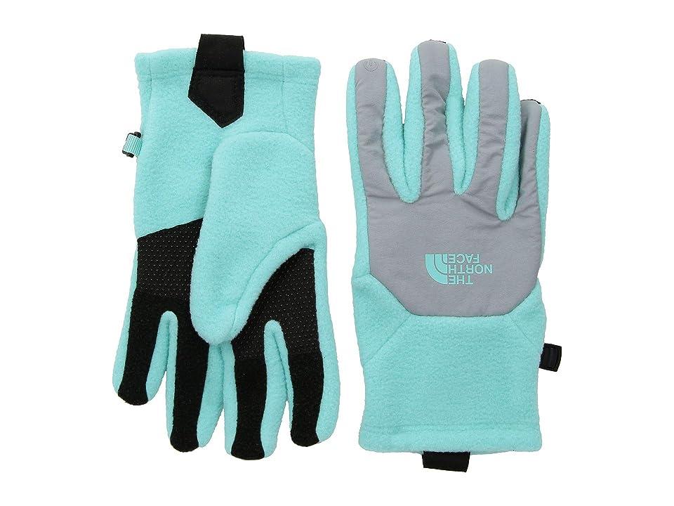 The North Face Kids Denali Etiptm Gloves (Big Kids) (Mint Blue/Mid Grey) Extreme Cold Weather Gloves
