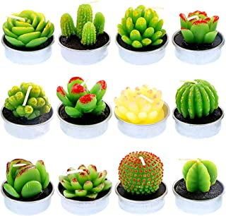 Glarks 12Pcs Unique Designs Cactus Tealight Candles Set, Handmade Delicate Succulent Cactus Artificial Succulents Tealight Candles Perfect for Birthday Party Valentine's Day Wedding Spa Home Decor