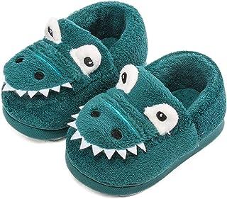 heekpek Zapatillas de Estar por Casa para Niños Niñas Estampadas de Dinosaurio Invierno Caliente