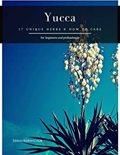 Yucca: 17 Unique herbs & How to Care