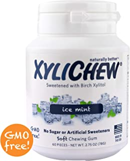Xylichew 100% Xylitol Chewing Gum Jars - Non GMO, Gluten, Aspartame, and Sugar Free Gum - Natural Oral Care, Relieves Bad Breath and Dry Mouth - Ice Mint (60 Count, Pack of 4)