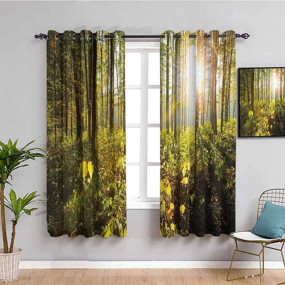 Forest Farmhouse Curtain Trees Sun 送料無料 激安 お買い得 キ゛フト Woods in Greener Rays Foliage 当店は最高な サービスを提供します
