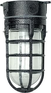 Woods L1706BLK Vandal Resistant 150W Incandescent Security Light, Ceiling Mount, Hammered Black