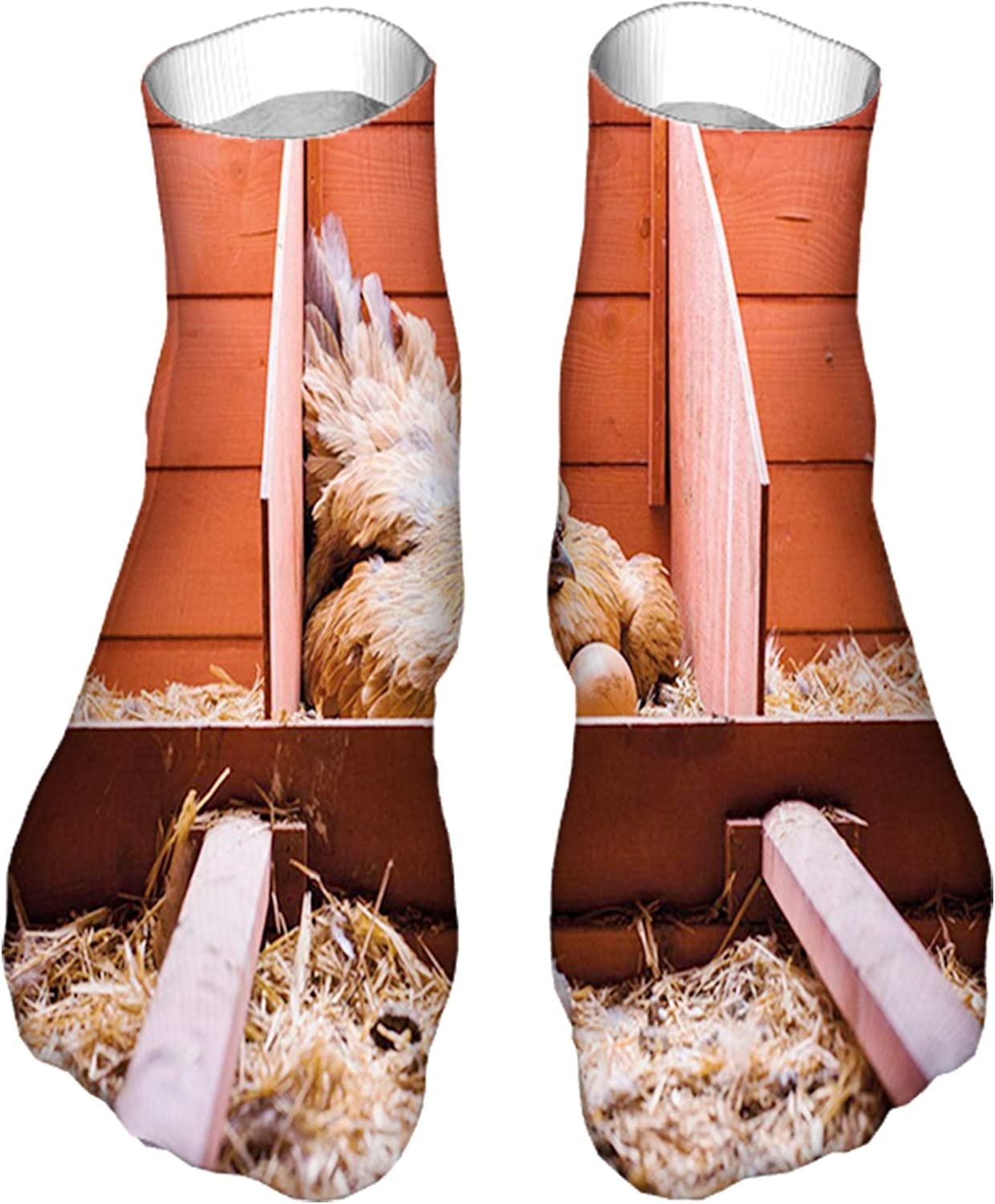 Men's and Women's Fun Socks Printed Cool Novelty Funny Socks,Husbandry Photo with Laying Hen Incubating Inside Cage