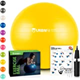 Top 10 Best Exercise Balls of 2020
