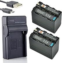 DSTE NP-F970 Li-Ion Batería (2 Paquetes) Traje y Cargador Micro USB Compatible con Sony CCD-TR716 CCD-TR818 CCD-TR910 CCD-TR917 CCD-TR930 CCD-TR940