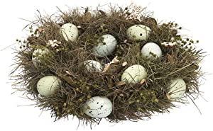 GALLERIE II Robins Egg Easter Spring Wreath Decor Decoration Green